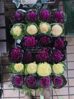 商店街の花屋さんの店頭に並んだ綺麗な花の写真・画像素材[2786452]