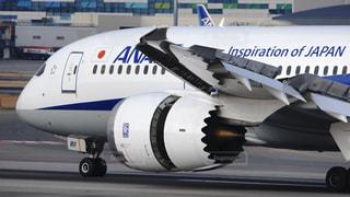 伊丹空港に着陸して逆噴射するボーイング787の写真・画像素材[2924397]