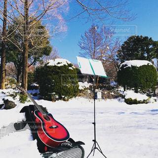 雪が降った翌日の公園でギター連絡の写真・画像素材[1019317]