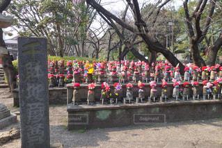 No.398127 冬