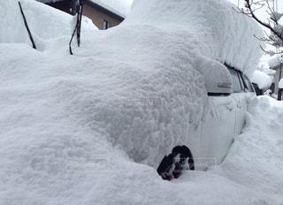 雪 - No.284249