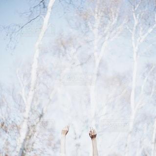 風景 - No.3630