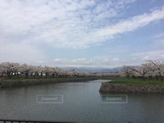 春の写真・画像素材[284469]