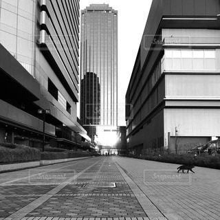 ビジネス街の写真・画像素材[3034707]