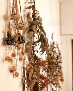 木の花の花瓶の写真・画像素材[1008973]