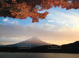 富士山の写真・画像素材[313083]