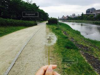 No.341961 京都