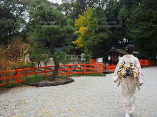 着物で京都の下鴨神社を訪れるの写真・画像素材[2102198]