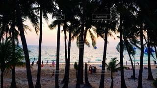 ホテルの目の前ビーチの写真・画像素材[2615315]