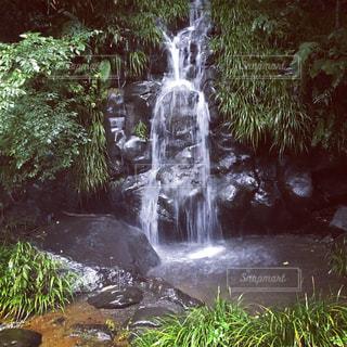 静岡の滝(タッキー)😊の写真・画像素材[285534]