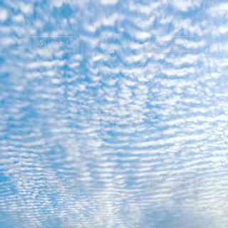 うろこ雲☁️の写真・画像素材[660745]