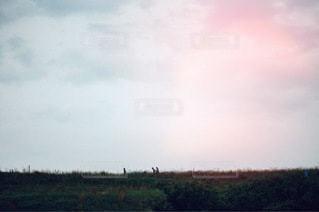 風景の写真・画像素材[3524]