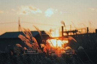 風景の写真・画像素材[3518]