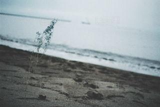 風景 - No.3505