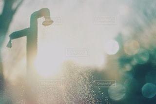 風景の写真・画像素材[3498]