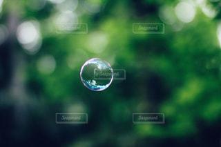 風景の写真・画像素材[3487]