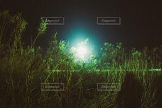 自然の写真・画像素材[3457]