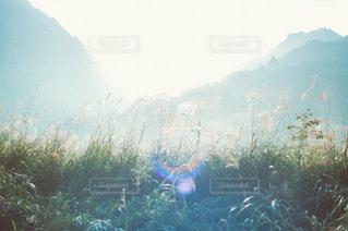 風景の写真・画像素材[3439]