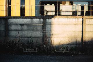 建物の側面の看板の写真・画像素材[2430314]
