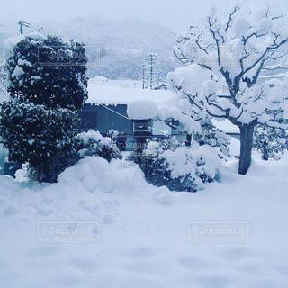 雪景色の写真・画像素材[315430]