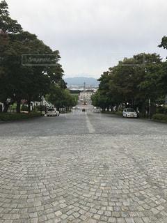 北海道の写真・画像素材[708813]