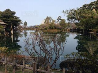 日本庭園の写真・画像素材[297225]