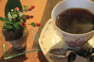 飲み物の写真・画像素材[319422]