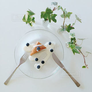 食べ物の写真・画像素材[286385]