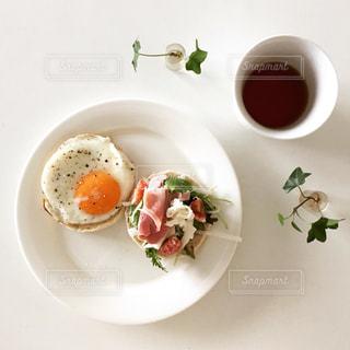 食べ物の写真・画像素材[286775]