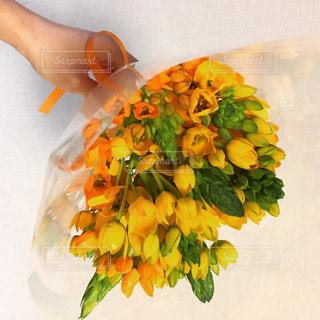 花を持っている手の写真・画像素材[1103523]