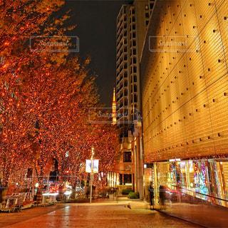 夜の街の景色の写真・画像素材[974772]