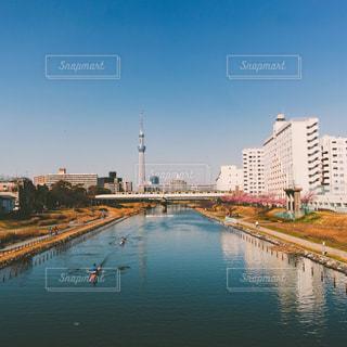 東京スカイツリーが見える場所の写真・画像素材[3086262]