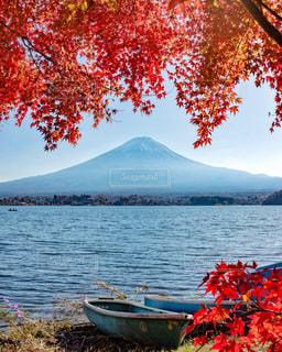 富士山と紅葉の写真・画像素材[3086285]