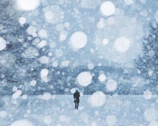 雪の中を歩く人の写真・画像素材[4051770]