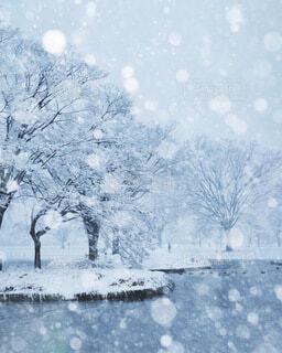 雪模様の写真・画像素材[4051772]