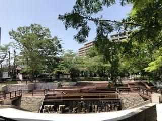 岐阜市 岐阜公園の写真・画像素材[1185763]