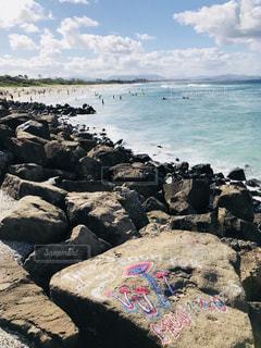 岩のビーチに立っているカモメの群れ - No.947836