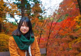 ツリーの前に立っている女性の写真・画像素材[1194175]