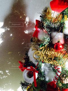 クリスマスツリーの写真・画像素材[288257]