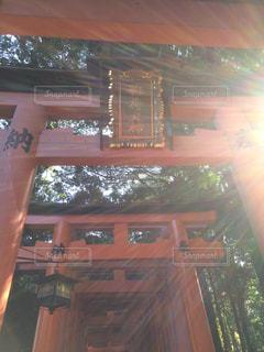 京都の写真・画像素材[288469]