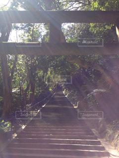 風景 - No.288150