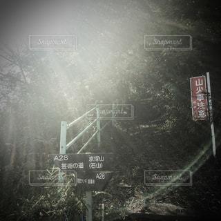 命 光 リラックス - No.306132