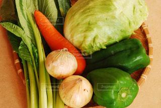 No.299744 野菜