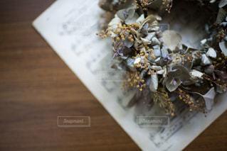 花の写真・画像素材[8462]