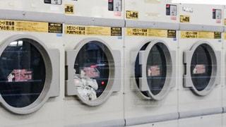 洗濯の写真・画像素材[312113]