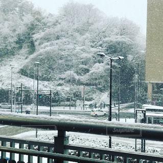 雪の街の写真・画像素材[1419181]