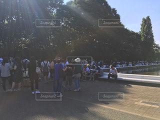 代々木公園の写真・画像素材[295763]
