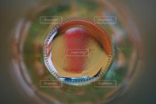 飲み物の写真・画像素材[290516]
