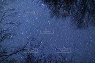 空の写真・画像素材[3380]