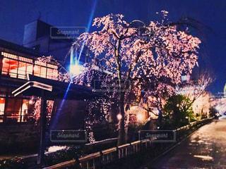 夜のライトアップされた街の写真・画像素材[1083466]